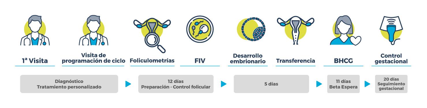 Procedimiento FIV_SUAVE_NATURAL