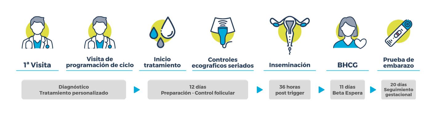 Procedimiento inseminación artificial con semen de donante
